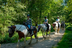 Western Horse Riding Trails