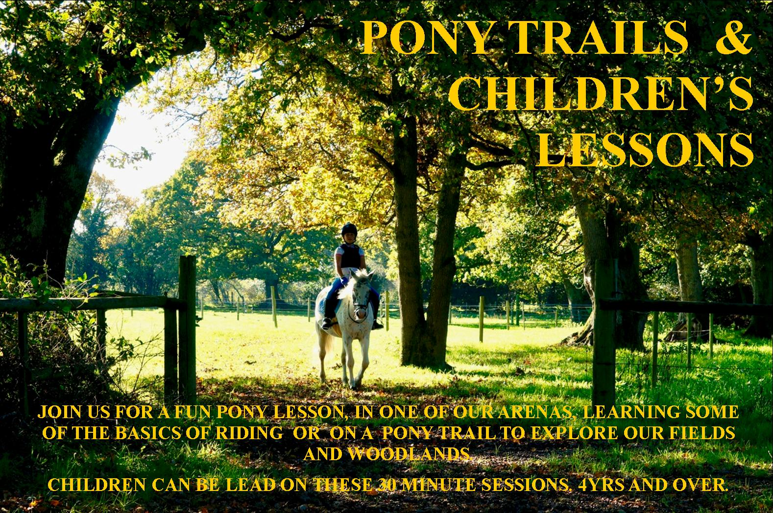 Horse Riding Western Trails In The New Forest National Park